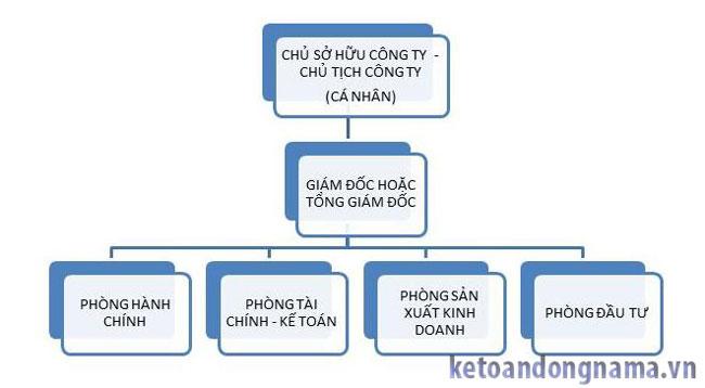 Cơ cấu công ty TNHH 1 thành viên